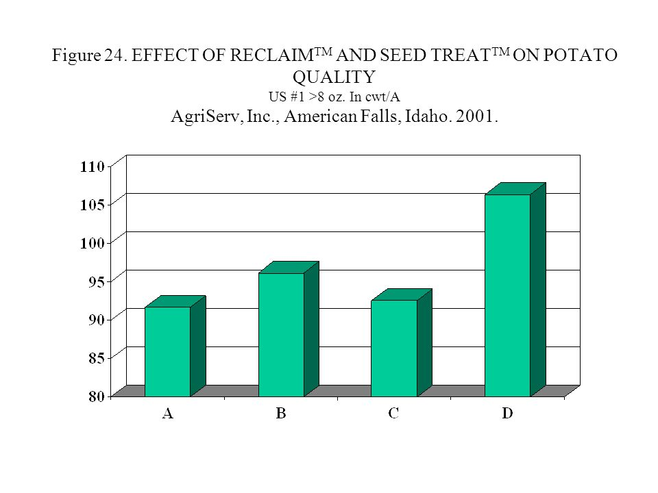 Figure 24. EFFECT OF RECLAIM TM AND SEED TREAT TM ON POTATO QUALITY US #1 >8 oz.