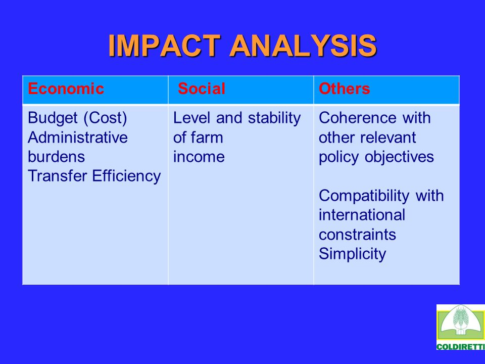 IMPACT ANALYSIS Economic SocialOthers Budget (Cost) Administrative burdens Transfer Efficiency Level and stability of farm income Coherence with other relevant policy objectives Compatibility with international constraints Simplicity