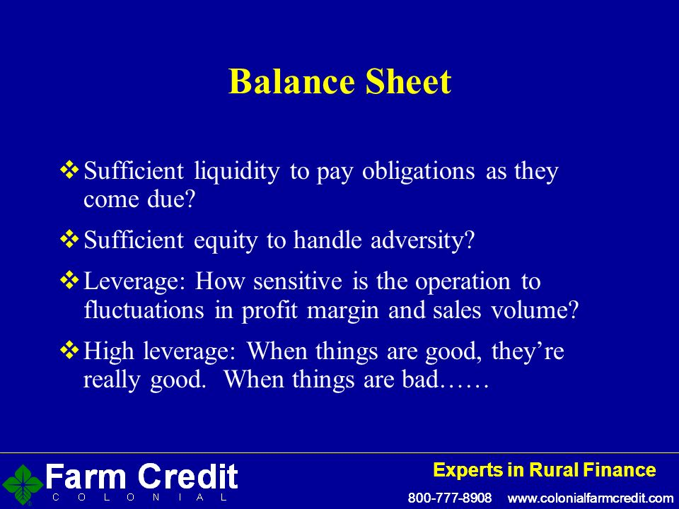800-777-8908 www.colonialfarmcredit.com Experts in Rural Finance 800-777-8908 www.colonialfarmcredit.com Experts in Rural Finance Balance Sheet Sufficient liquidity to pay obligations as they come due.