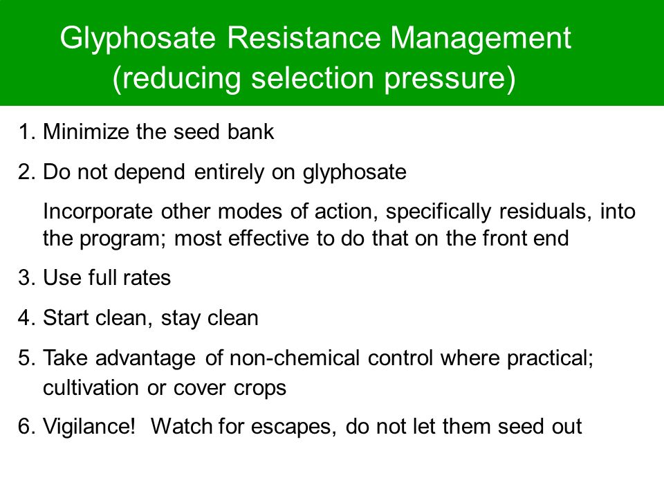 Glyphosate Resistance Management (reducing selection pressure) 1.Minimize the seed bank 2.Do not depend entirely on glyphosate Incorporate other modes of action, specifically residuals, into the program; most effective to do that on the front end 3.Use full rates 4.Start clean, stay clean 5.Take advantage of non-chemical control where practical; cultivation or cover crops 6.Vigilance.
