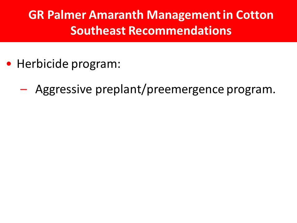 GR Palmer Amaranth Management in Cotton Southeast Recommendations Herbicide program: – Aggressive preplant/preemergence program.