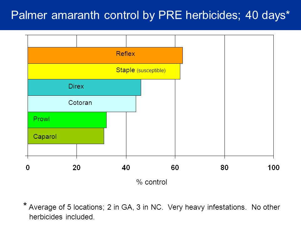 Palmer amaranth control by PRE herbicides; 40 days* Cotoran Prowl Direx Caparol Reflex % control * Average of 5 locations; 2 in GA, 3 in NC.