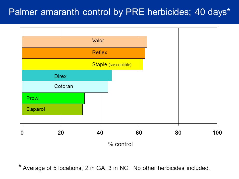 Palmer amaranth control by PRE herbicides; 40 days* Cotoran Prowl Valor Direx Caparol Reflex Staple (susceptible) % control * Average of 5 locations; 2 in GA, 3 in NC.