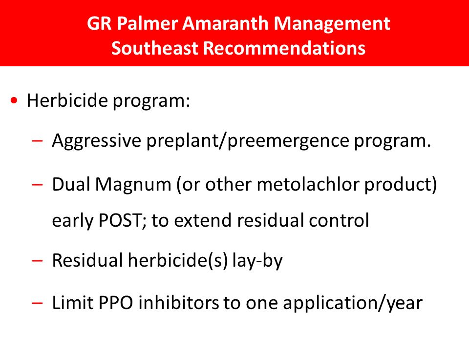 GR Palmer Amaranth Management Southeast Recommendations Herbicide program: – Aggressive preplant/preemergence program.