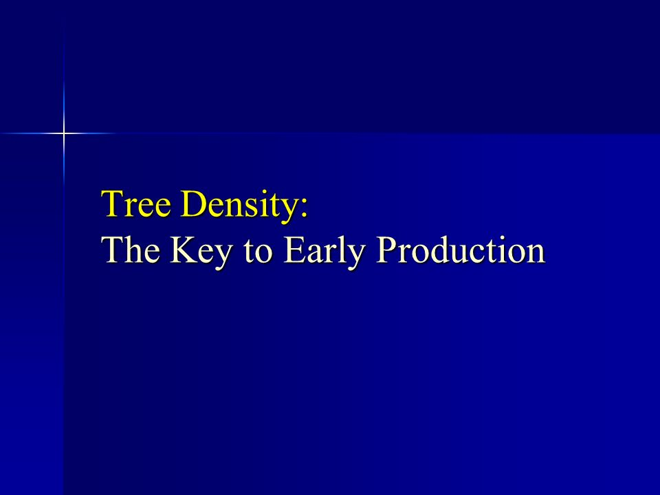 Tree Density: The Key to Early Production