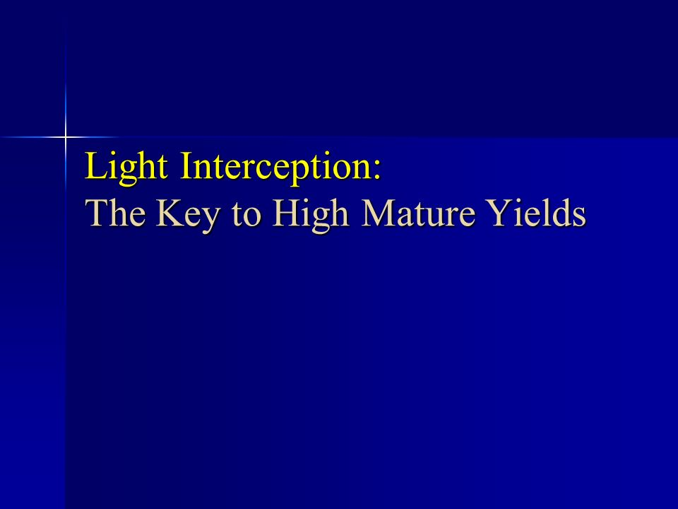 Light Interception: The Key to High Mature Yields