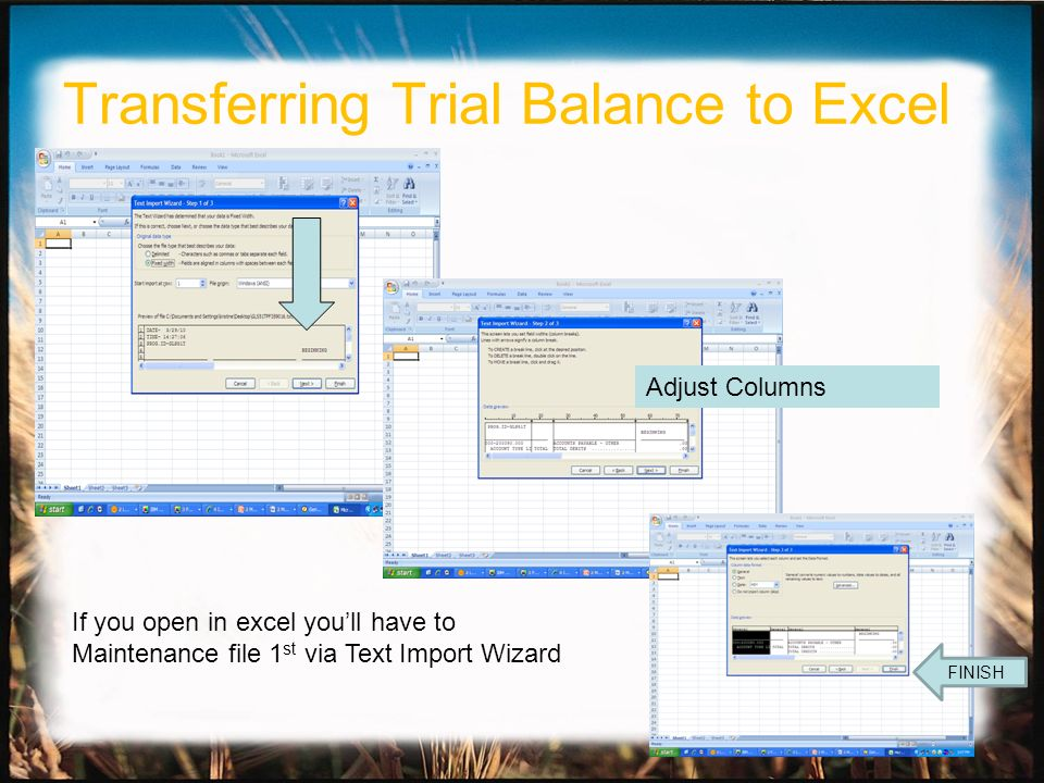 Adjust Columns FINISH If you open in excel youll have to Maintenance file 1 st via Text Import Wizard Transferring Trial Balance to Excel