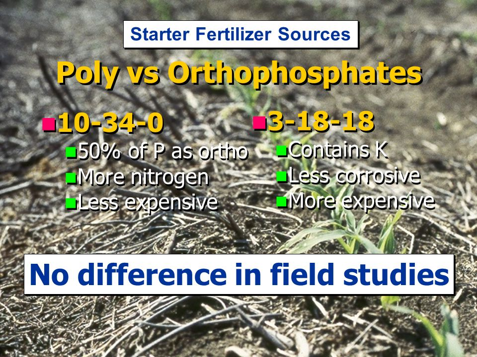 Poly vs Orthophosphates % of P as ortho More nitrogen Less expensive % of P as ortho More nitrogen Less expensive Contains K Less corrosive More expensive Contains K Less corrosive More expensive No difference in field studies Starter Fertilizer Sources