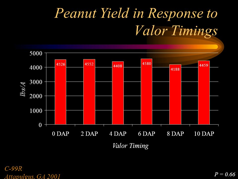 Peanut Yield in Response to Valor Timings 4526 4552 4408 4580 4188 4459 0 1000 2000 3000 4000 5000 0 DAP2 DAP4 DAP6 DAP8 DAP10 DAP Valor Timing lbs/A C-99R Attapulgus, GA 2001 P = 0.66
