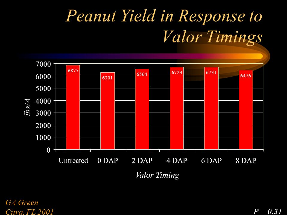 Peanut Yield in Response to Valor Timings 6875 6301 6564 67236731 6476 0 1000 2000 3000 4000 5000 6000 7000 Untreated0 DAP2 DAP4 DAP6 DAP8 DAP Valor Timing lbs/A GA Green Citra, FL 2001 P = 0.31