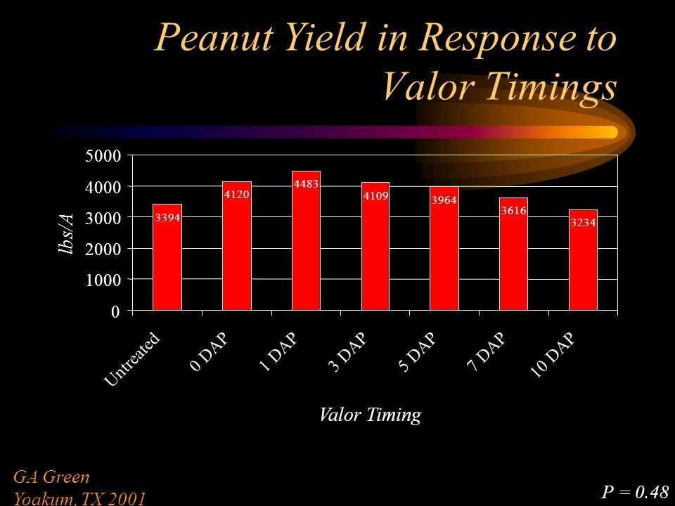 Peanut Yield in Response to Valor Timings 3394 4120 4483 4109 3964 3616 3234 0 1000 2000 3000 4000 5000 Untreated 0 DAP1 DAP3 DAP5 DAP7 DAP 10 DAP Valor Timing lbs/A GA Green Yoakum, TX 2001 P = 0.48