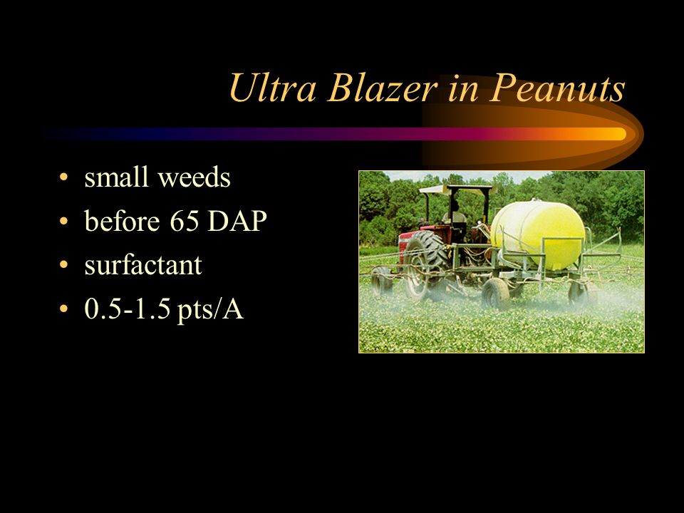 Ultra Blazer in Peanuts small weeds before 65 DAP surfactant 0.5-1.5 pts/A