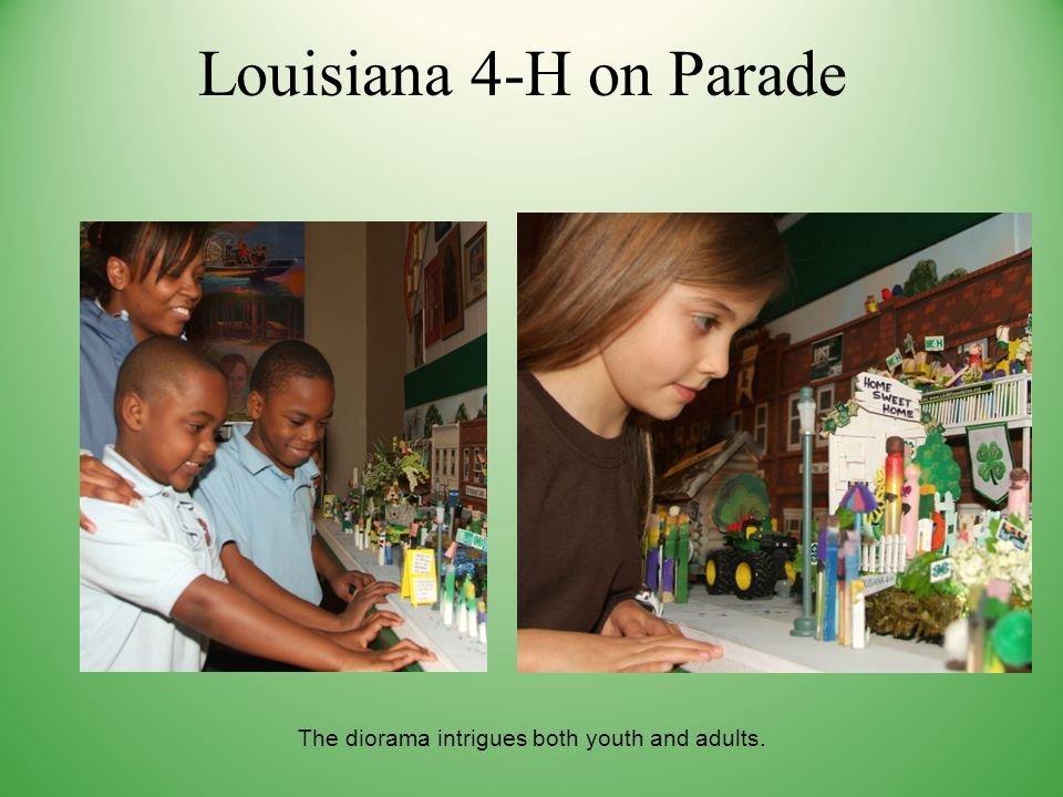 Louisiana 4-H on Parade The diorama intrigues both youth and adults.
