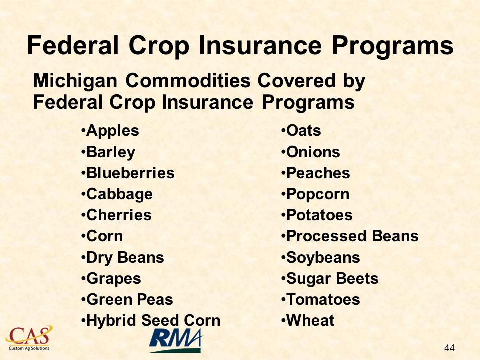 44 Michigan Commodities Covered by Federal Crop Insurance Programs Apples Barley Blueberries Cabbage Cherries Corn Dry Beans Grapes Green Peas Hybrid Seed Corn Oats Onions Peaches Popcorn Potatoes Processed Beans Soybeans Sugar Beets Tomatoes Wheat Federal Crop Insurance Programs