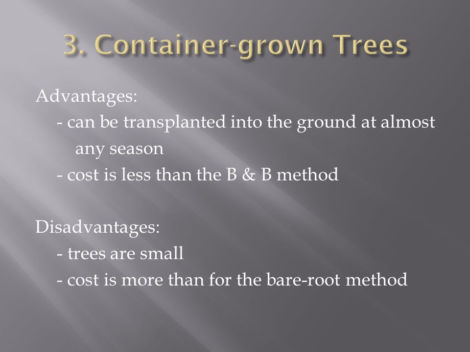 Advantages: - can be transplanted into the ground at almost any season - cost is less than the B & B method Disadvantages: - trees are small - cost is more than for the bare-root method