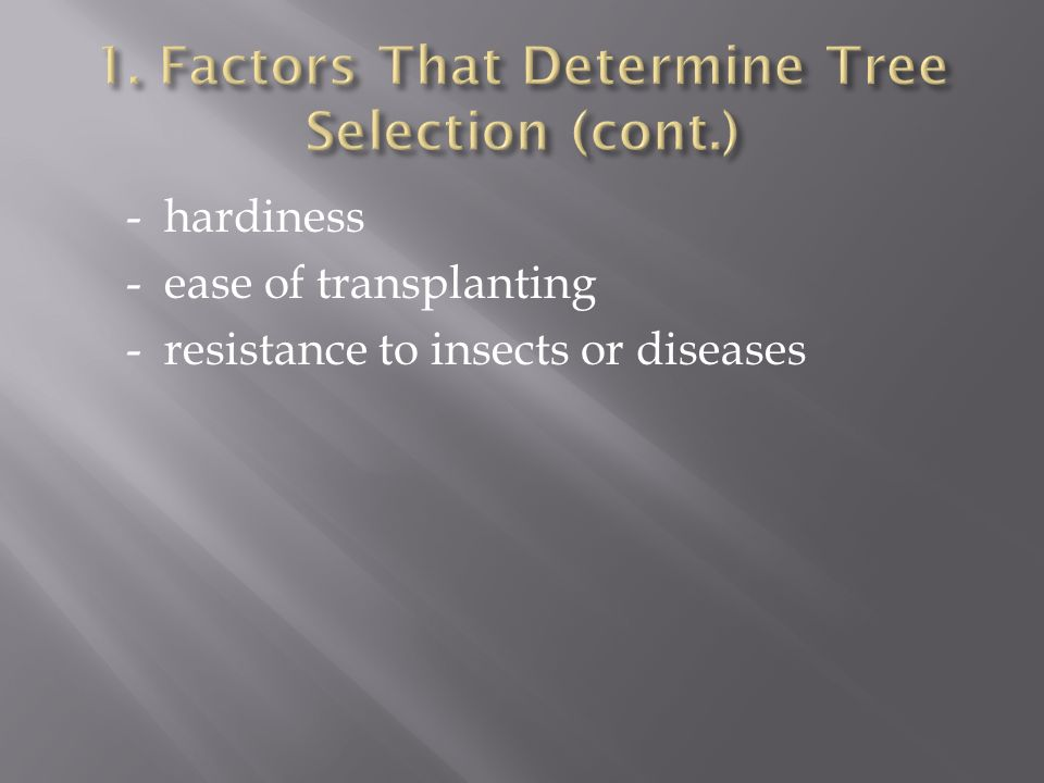 - hardiness - ease of transplanting - resistance to insects or diseases
