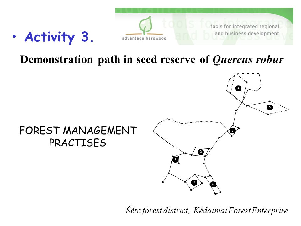 Šėta forest district, Kėdainiai Forest Enterprise Demonstration path in seed reserve of Quercus robur FOREST MANAGEMENT PRACTISES Activity 3.