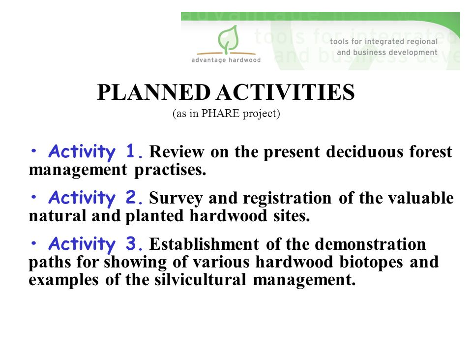 PLANNED ACTIVITIES (as in PHARE project) Activity 1.