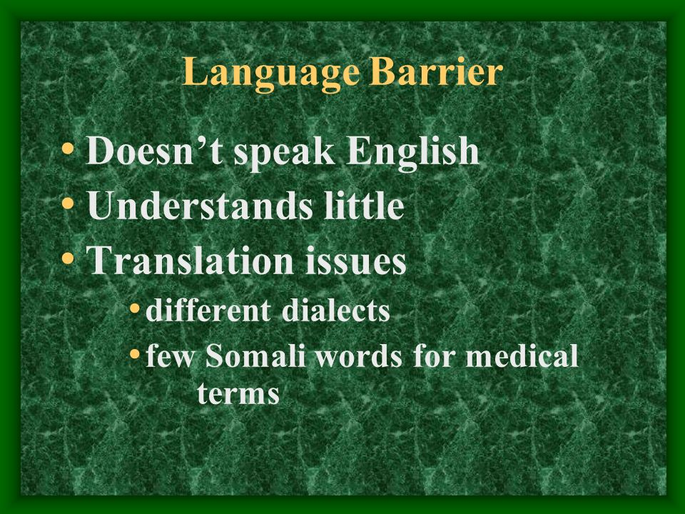 Language Barrier Doesnt speak English Understands little Translation issues different dialects few Somali words for medical terms