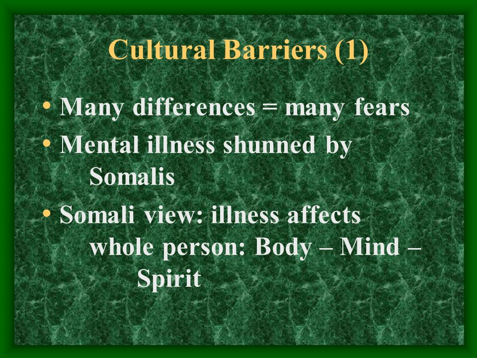 Cultural Barriers (1) Many differences = many fears Mental illness shunned by Somalis Somali view: illness affects whole person: Body – Mind – Spirit