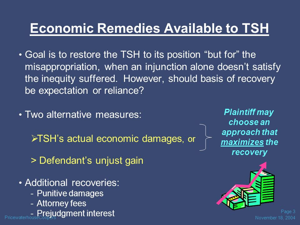 PricewaterhouseCoopers November 18, 2004 Page 3 Economic Remedies Available to TSH Goal is to restore the TSH to its position but for the misappropriation, when an injunction alone doesnt satisfy the inequity suffered.