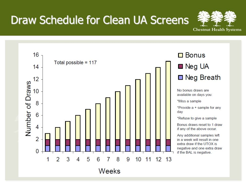 Draw Schedule for Clean UA Screens