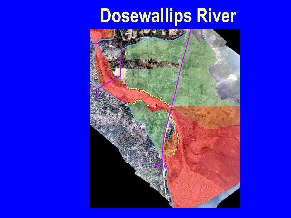 Dosewallips River