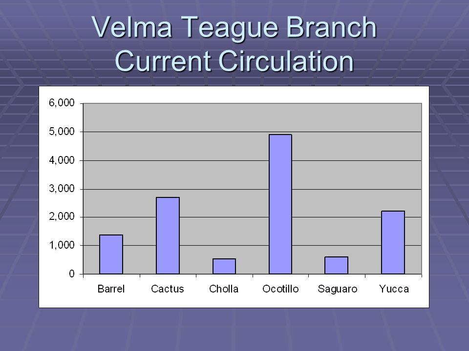 Velma Teague Branch Current Circulation