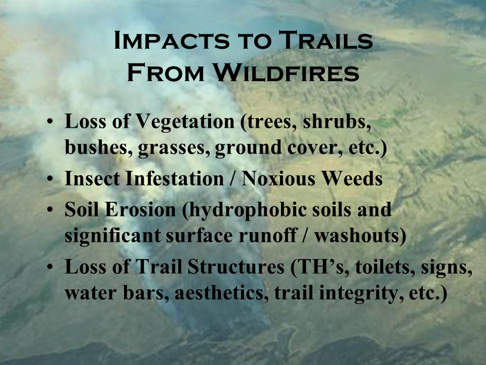 Impacts to Trails From Wildfires Loss of Vegetation (trees, shrubs, bushes, grasses, ground cover, etc.) Insect Infestation / Noxious Weeds Soil Erosion (hydrophobic soils and significant surface runoff / washouts) Loss of Trail Structures (THs, toilets, signs, water bars, aesthetics, trail integrity, etc.)
