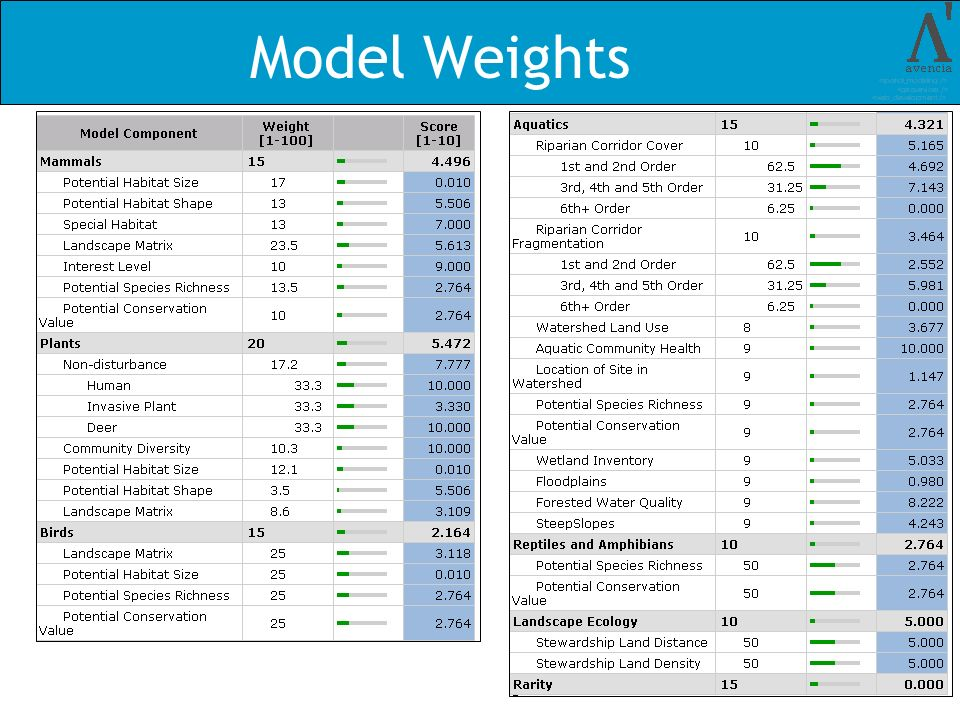 Model Weights