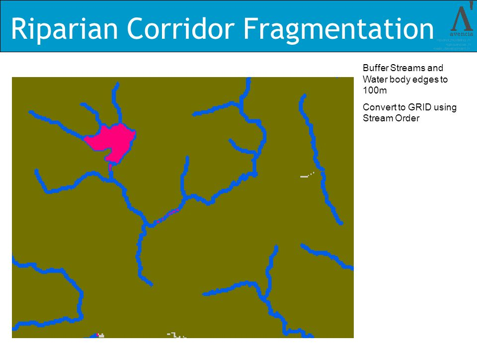 Riparian Corridor Fragmentation Buffer Streams and Water body edges to 100m Convert to GRID using Stream Order