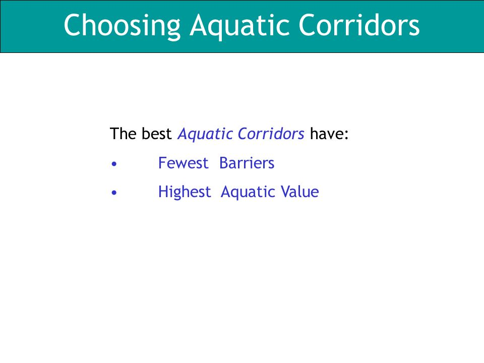 Choosing Aquatic Corridors The best Aquatic Corridors have: Fewest Barriers Highest Aquatic Value