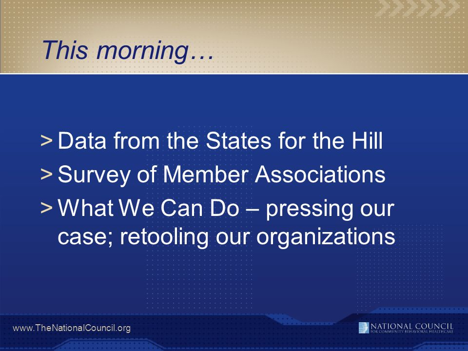 www.TheNationalCouncil.org This morning… >Data from the States for the Hill >Survey of Member Associations >What We Can Do – pressing our case; retooling our organizations