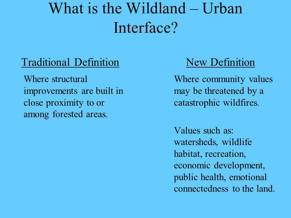What is the Wildland – Urban Interface.
