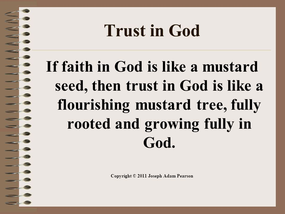 Trust in God If faith in God is like a mustard seed, then trust in God is like a flourishing mustard tree, fully rooted and growing fully in God.