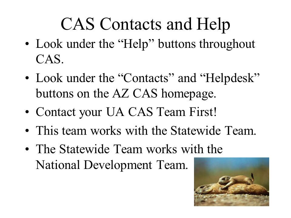 CAS Contacts and Help Look under the Help buttons throughout CAS.