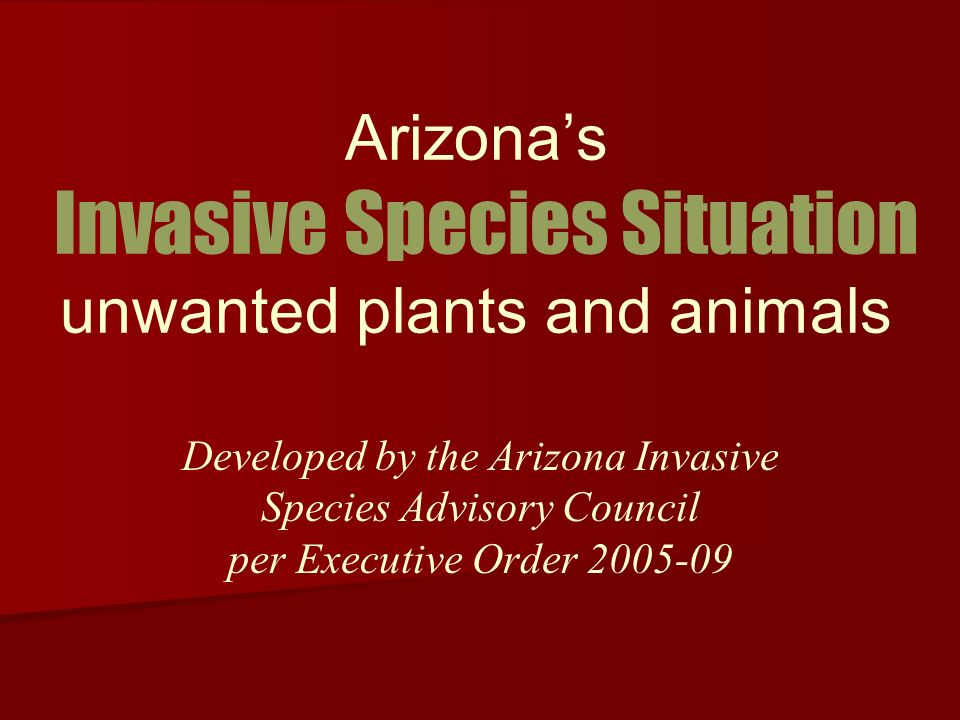 Arizonas Invasive Species Situation unwanted plants and animals Developed by the Arizona Invasive Species Advisory Council per Executive Order