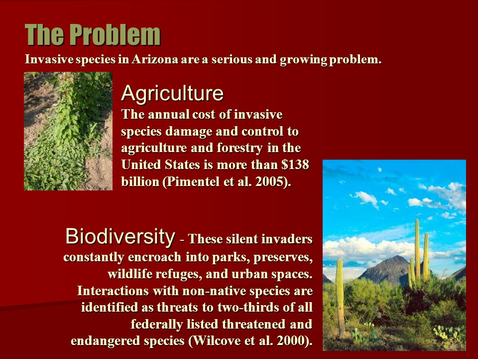 Biodiversity - These silent invaders constantly encroach into parks, preserves, wildlife refuges, and urban spaces.