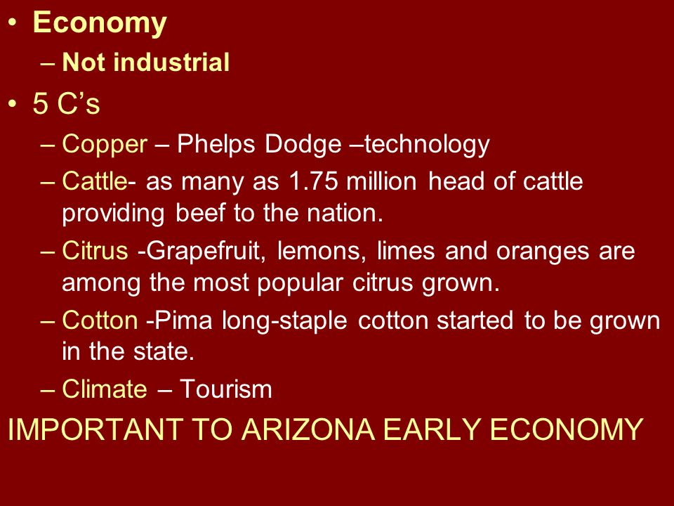 Economy –Not industrial 5 Cs –Copper – Phelps Dodge –technology –Cattle- as many as 1.75 million head of cattle providing beef to the nation.