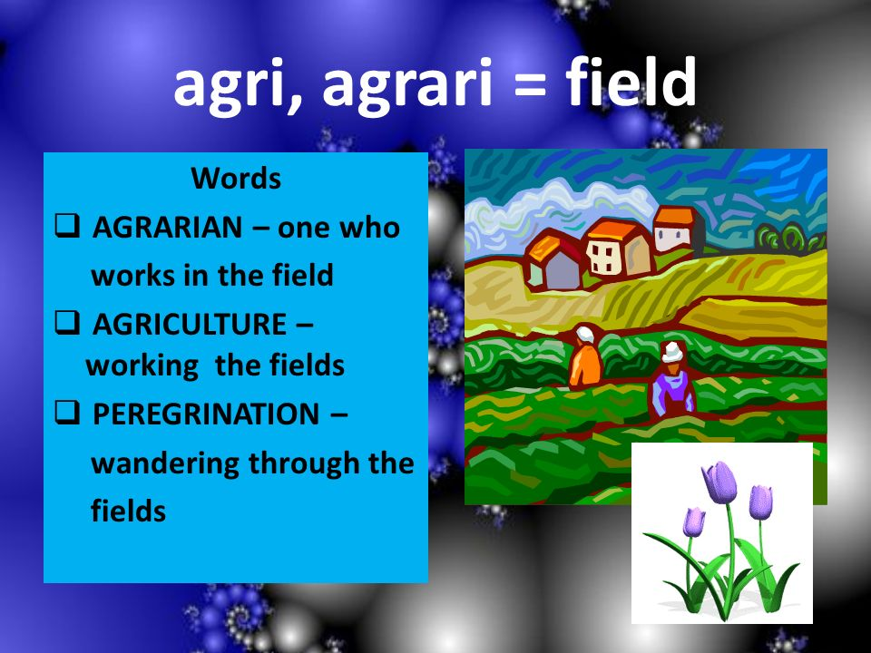 agri, agrari = field Words AGRARIAN – one who works in the field AGRICULTURE – working the fields PEREGRINATION – wandering through the fields