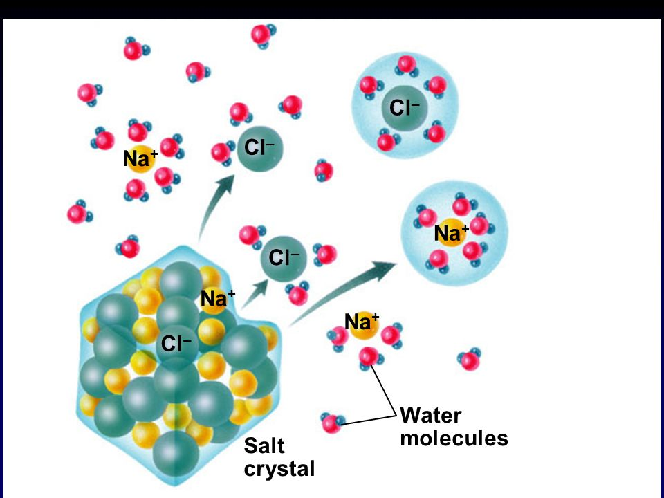 7 Water molecules Salt crystal Na + Cl – Na + Cl – Copyright © The McGraw-Hill Companies, Inc.