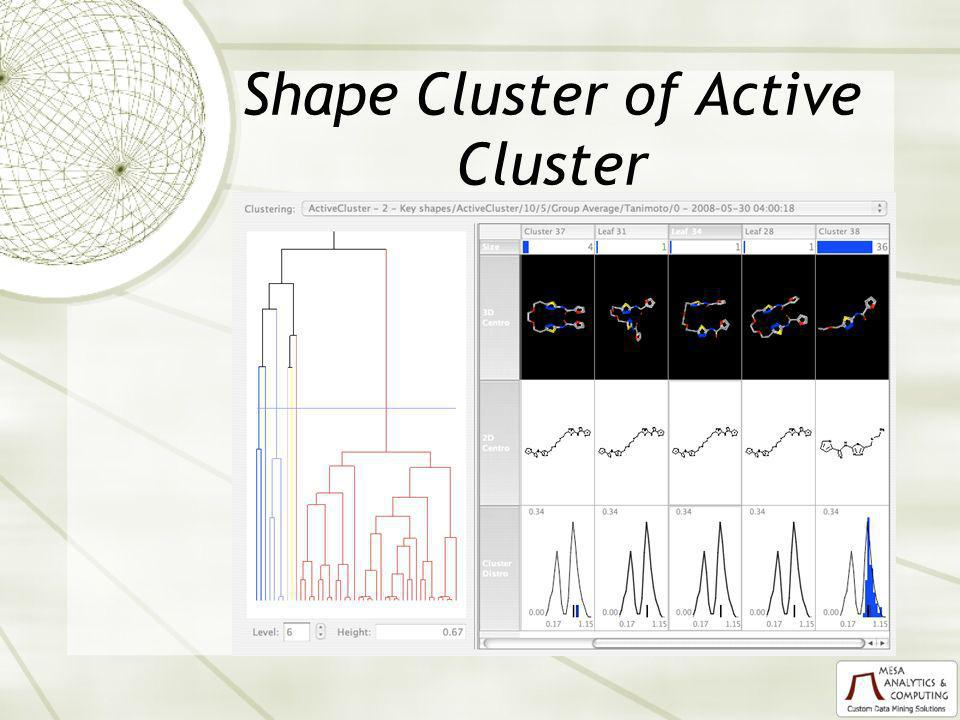 Shape Cluster of Active Cluster