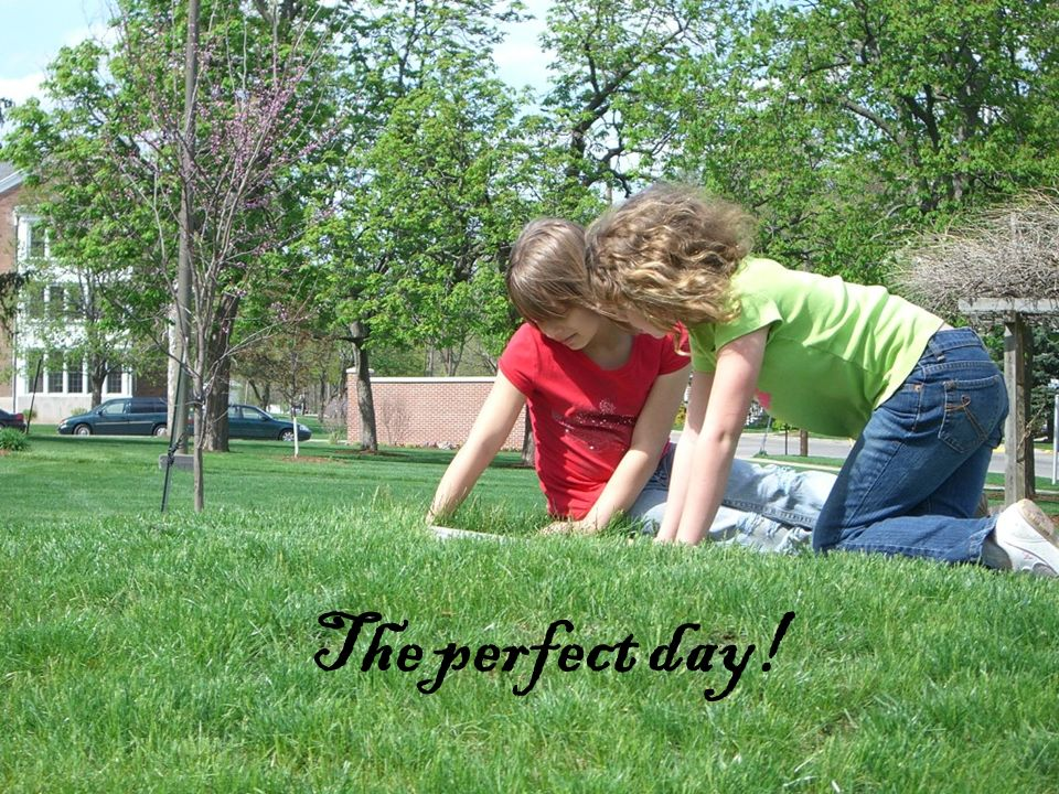 The perfect day!