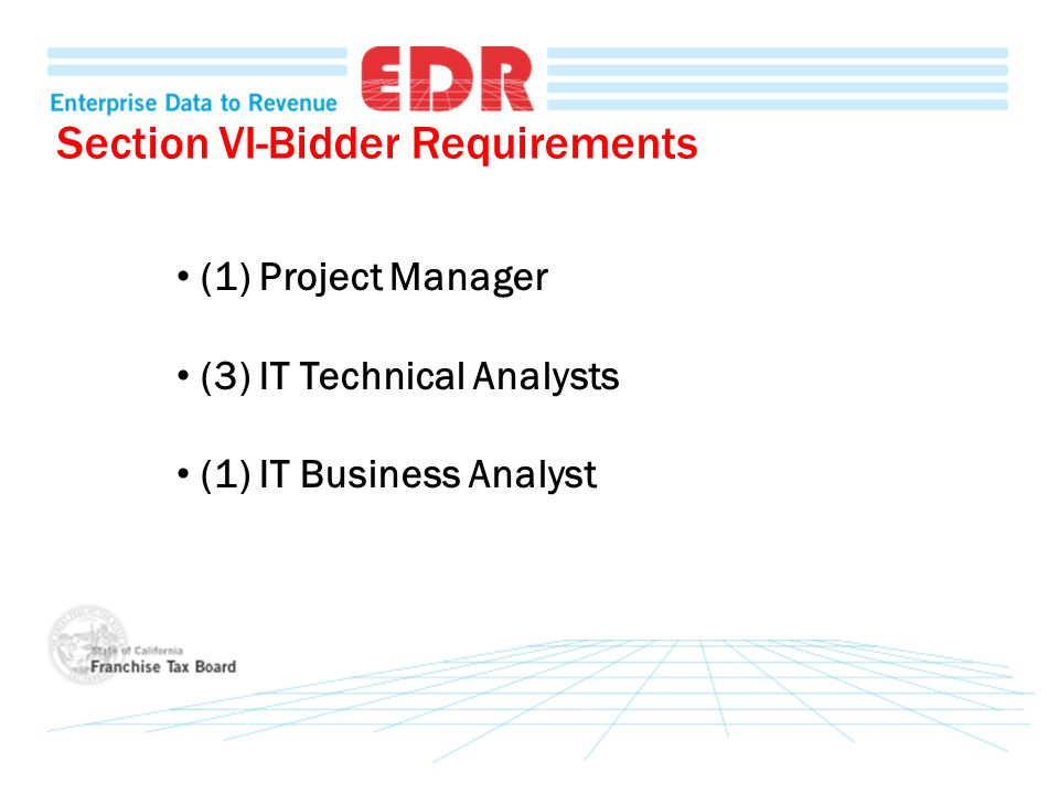 Section VI-Bidder Requirements (1) Project Manager (3) IT Technical Analysts (1) IT Business Analyst