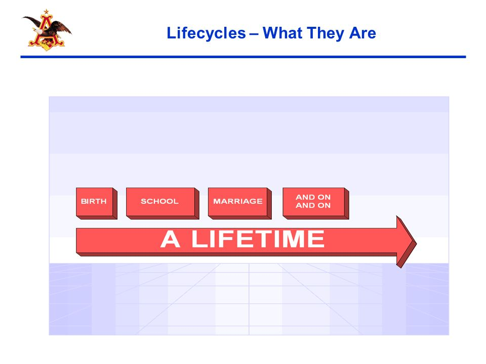 6 Lifecycles – What They Are