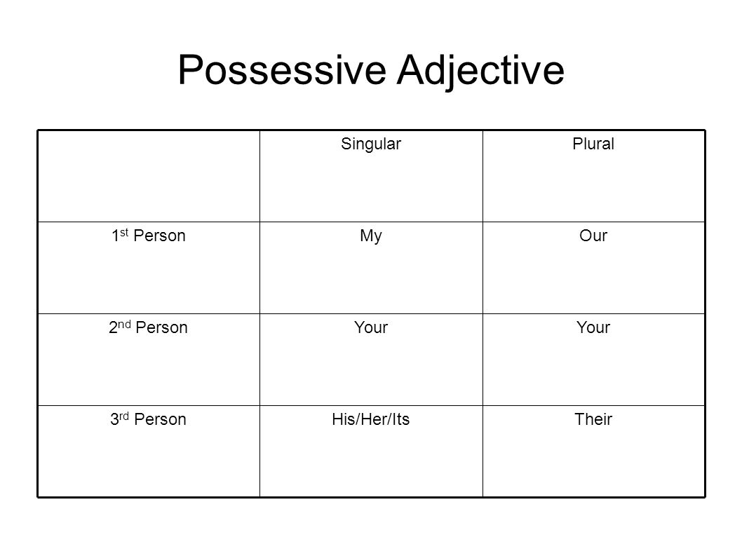 Possessive Adjective TheirHis/Her/Its3 rd Person Your 2 nd Person OurMy1 st Person PluralSingular