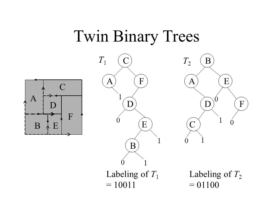 Twin Binary Trees A B C D E F C AF D E B T1T1 B AE D C F T2T2 1 1 1 0 0 0 0 1 1 Labeling of T 1 = 10011 0 Labeling of T 2 = 01100