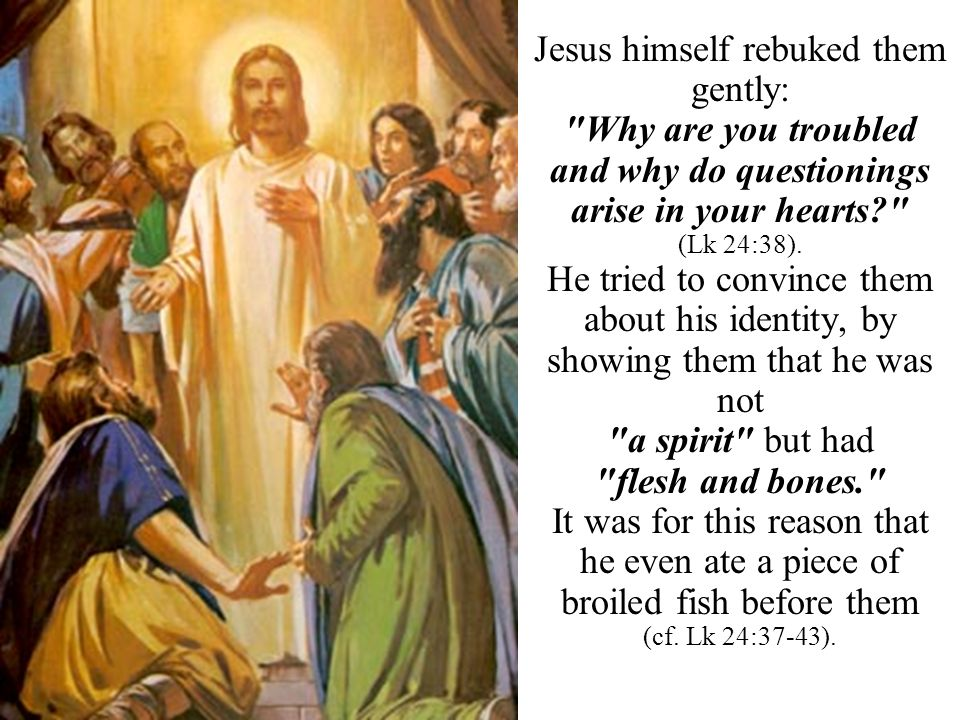 Jesus himself rebuked them gently: Why are you troubled and why do questionings arise in your hearts (Lk 24:38).