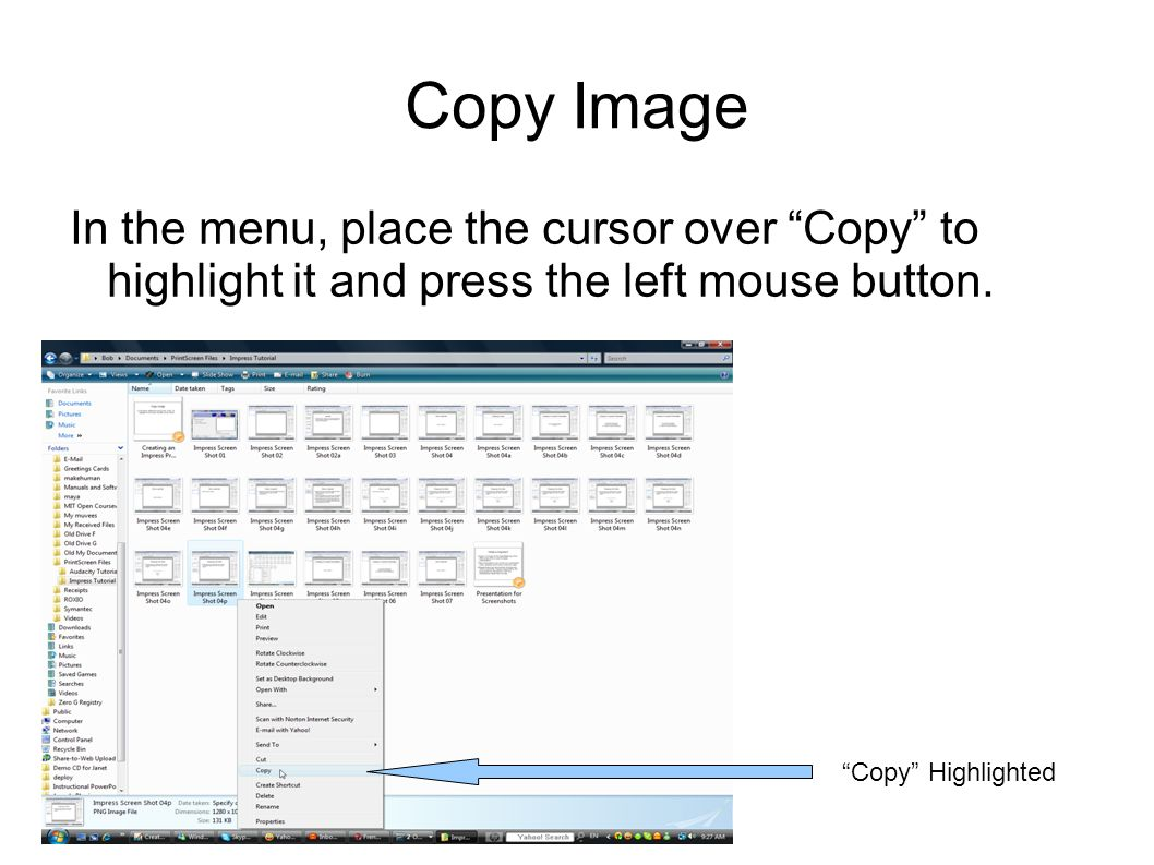 Copy Image In the menu, place the cursor over Copy to highlight it and press the left mouse button.