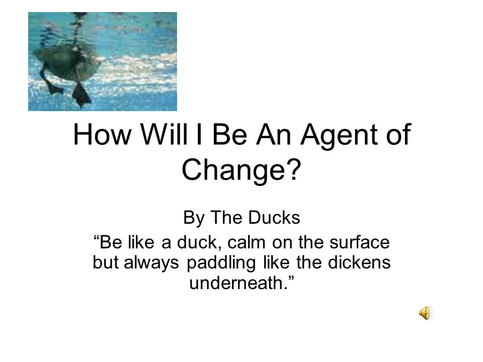 How Will I Be An Agent of Change.
